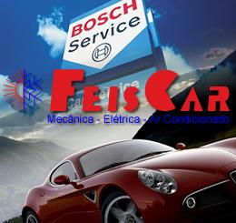 feiscar260